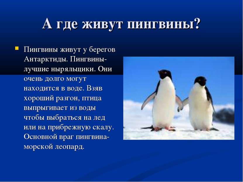 А где живут пингвины? Пингвины живут у берегов Антарктиды. Пингвины-лучшие ны...