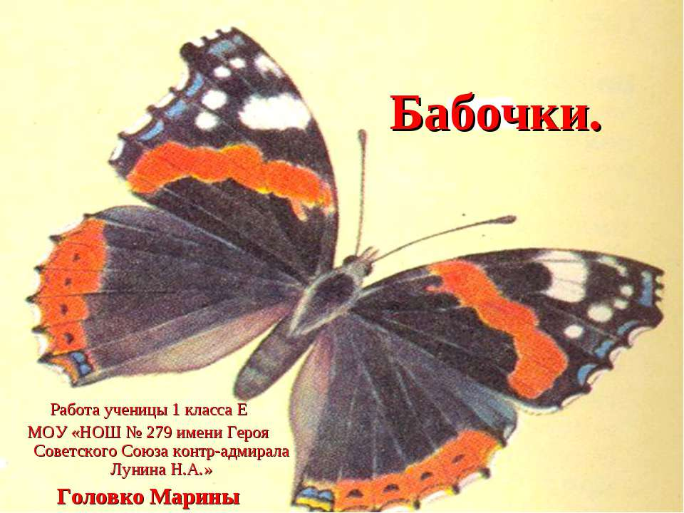 Бабочки. Работа ученицы 1 класса Е МОУ «НОШ № 279 имени Героя Советского Союз...
