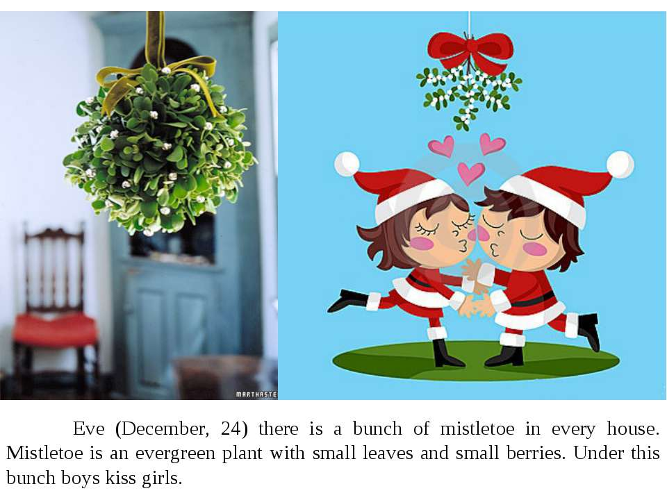 Eve (December, 24) there is a bunch of mistletoe in every house. Mistletoe is...