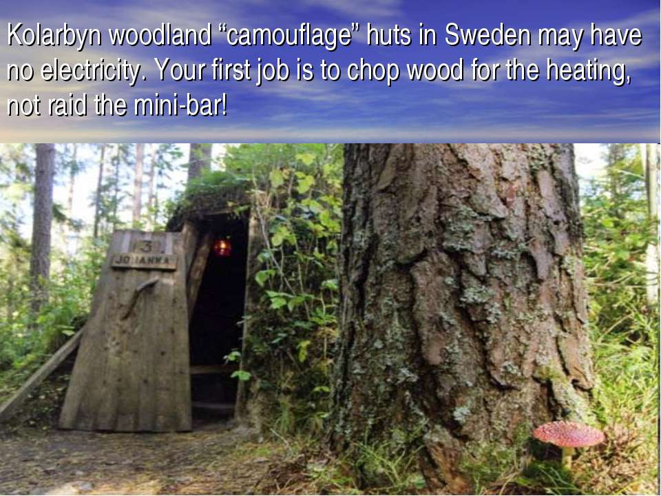 "Kolarbyn woodland ""camouflage"" huts in Sweden may have no electricity. Your f..."