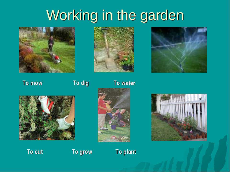 Working in the garden To mow To dig To water To cut To grow To plant