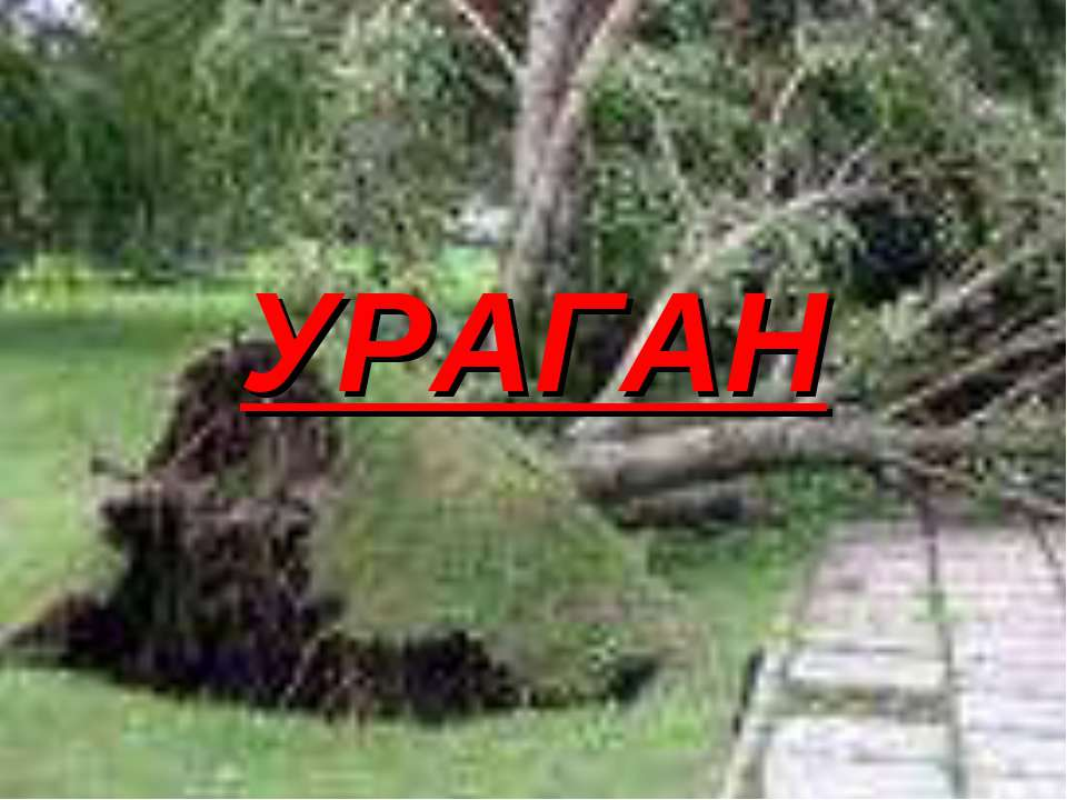 Презентацию на тему ураганы 7 класс