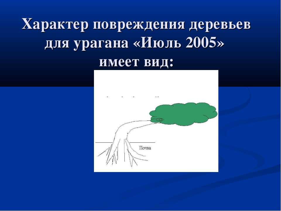 Характер повреждения деревьев для урагана «Июль 2005» имеет вид: