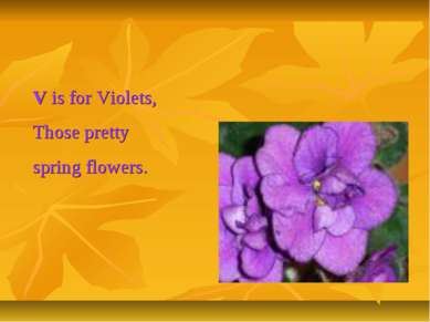 V is for Violets, Those pretty spring flowers.