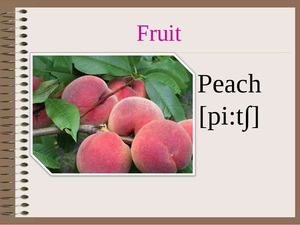 Fruit Peach [pi:t∫]