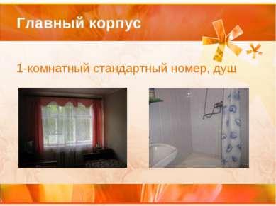 Главный корпус 1-комнатный стандартный номер, душ