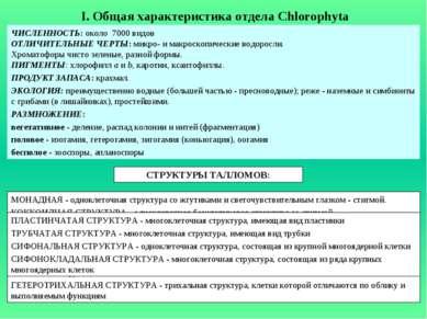 I. Общая характеристика отдела Chlorophyta ЧИСЛЕННОСТЬ: около 7000 видов ОТЛИ...