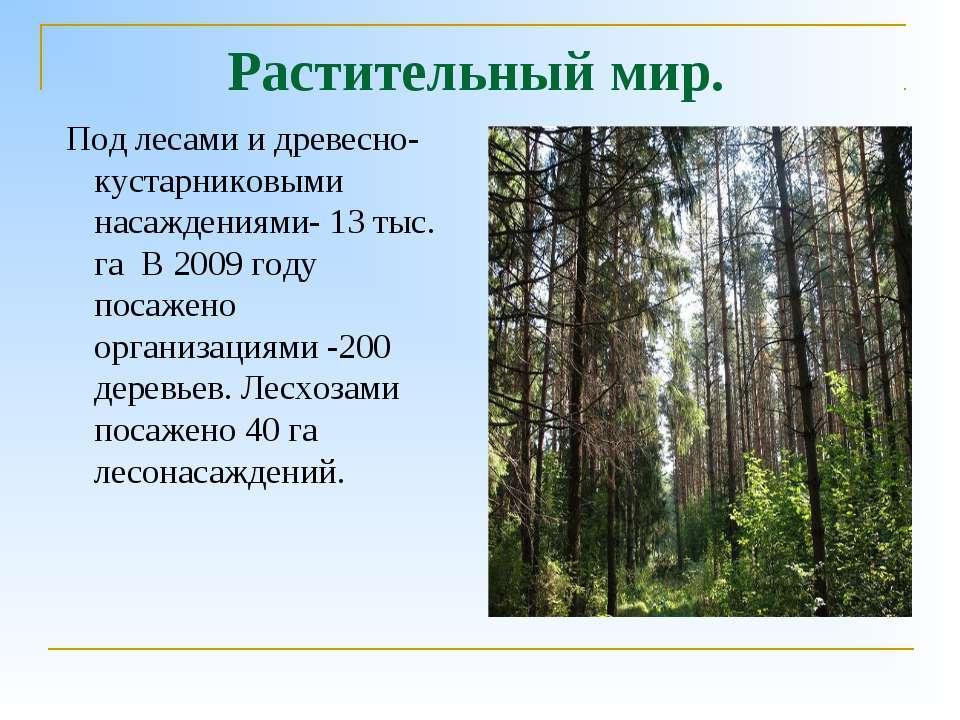 Растительный мир. Под лесами и древесно-кустарниковыми насаждениями- 13 тыс. ...