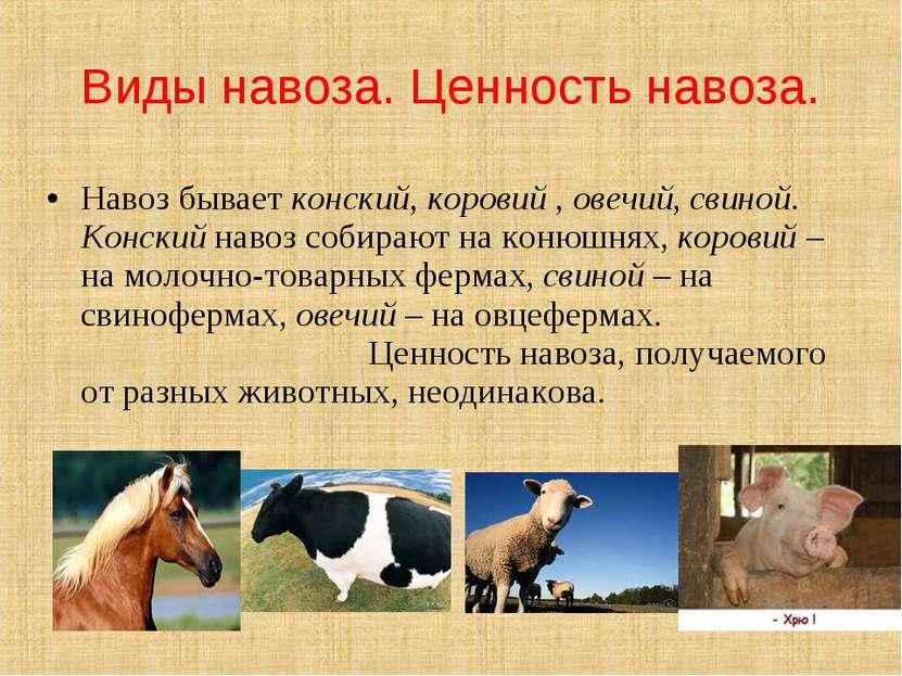 Навоз бывает конский, коровий , овечий, свиной. Конский навоз собирают на кон...