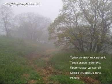 Туман сочится меж ветвей, Трава сырая побелела. Пронизывает до костей Седою и...