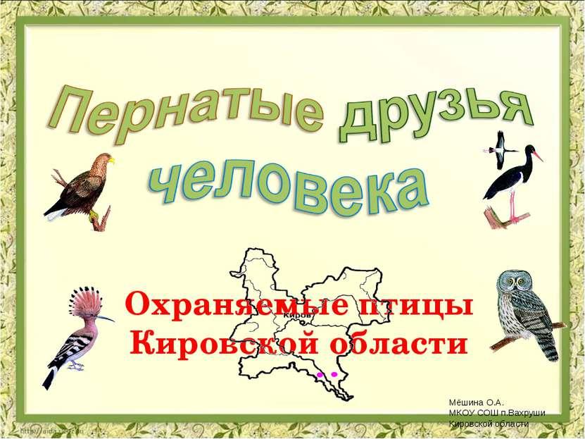 Охраняемые птицы Кировской области Мёшина О.А. МКОУ СОШ п.Вахруши Кировской о...