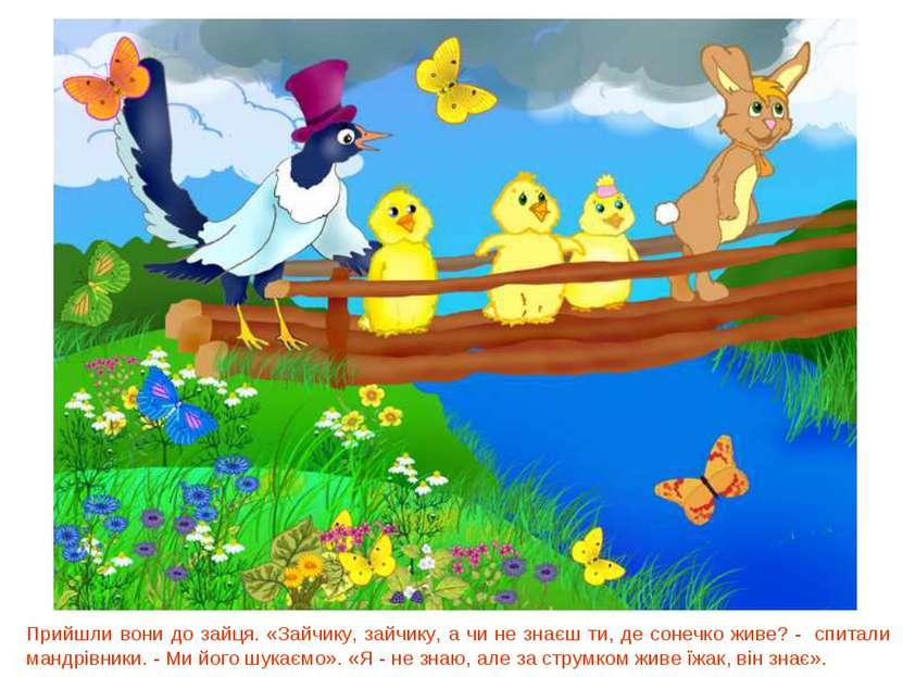 Прийшли вони до зайця. «Зайчику, зайчику, а чи не знаєш ти, де сонечко живе? ...