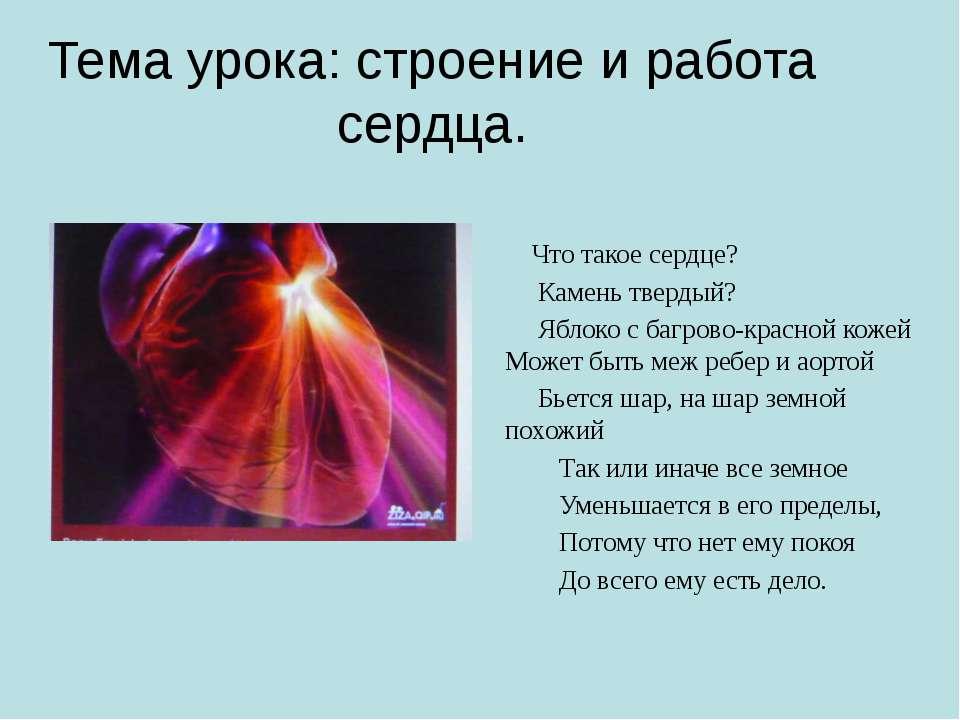 Тема урока: строение и работа сердца. Что такое сердце? Камень твердый? Яблок...