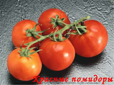 Красные помидоры Лазарева Лидия Андреевна, учитель начальных классов, Рижская...