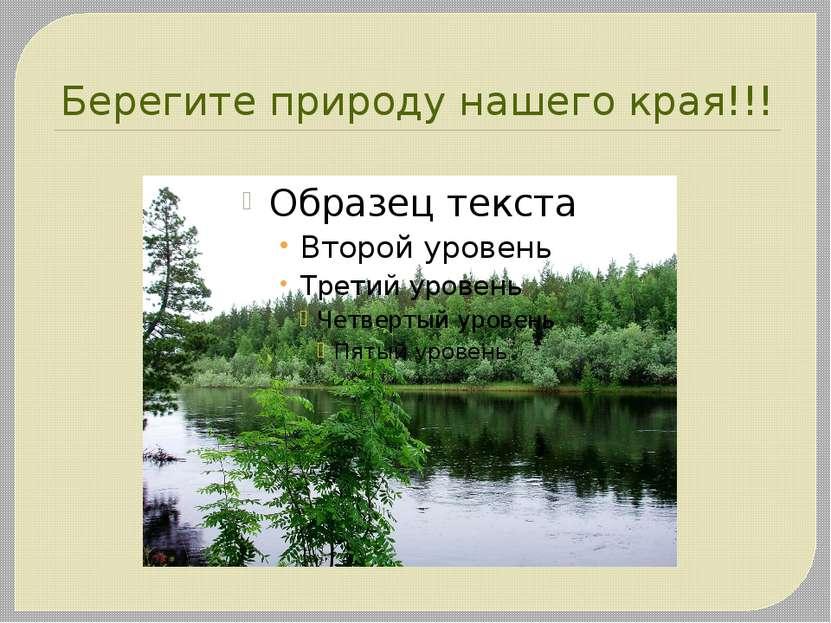 Берегите природу нашего края!!!