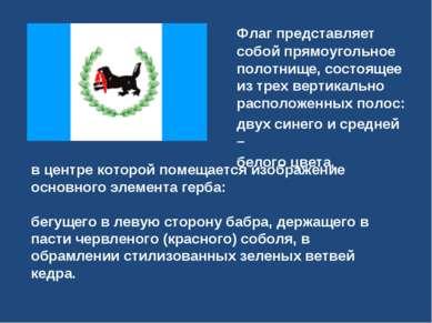 Флаг представляет собой прямоугольное полотнище, состоящее из трех вертикальн...