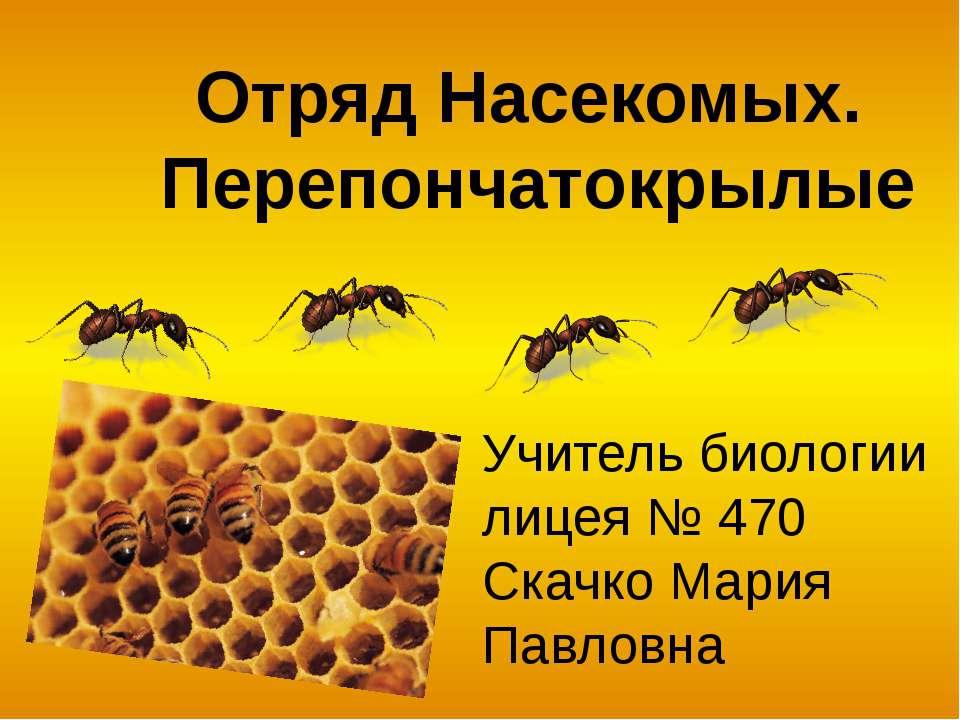 Общая характеристика 300 тыс. видов Распространены повсеместно (за исключение...