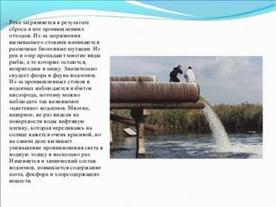 Река загрязняется в результате сброса в нее промышленных отходов. Из-за загря...