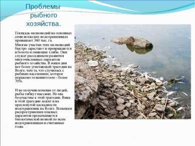 Проблемы рыбного хозяйства. Площадь мелководий на основных семи волжских водо...