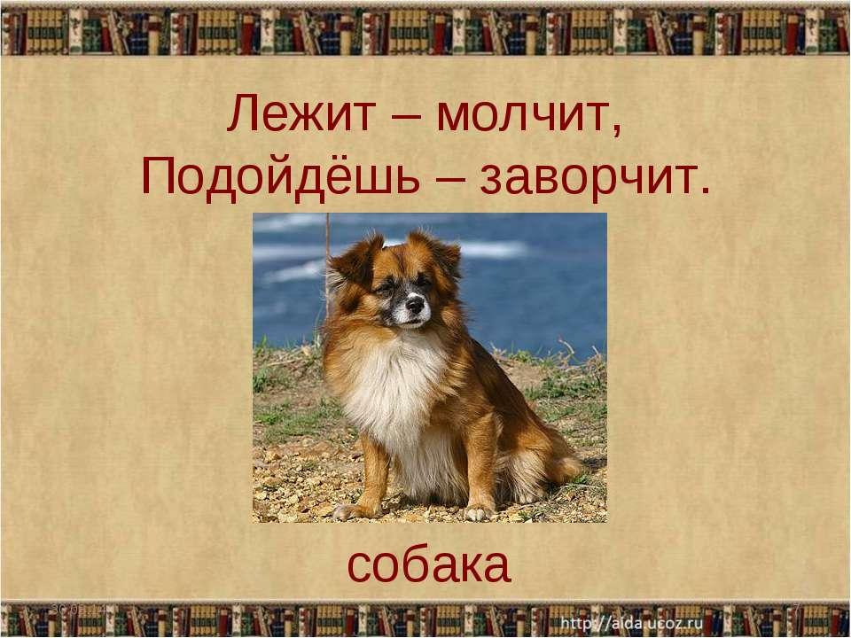 Лежит – молчит, Подойдёшь – заворчит. * * собака