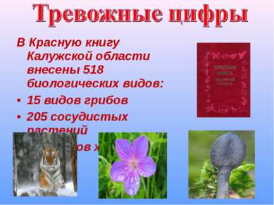 В Красную книгу Калужской области внесены 518 биологических видов: 15 видов г...