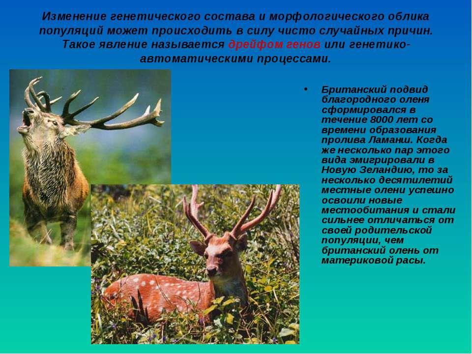 Изменение генетического состава и морфологического облика популяций может про...