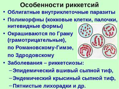 Особенности риккетсий Облигатные внутриклеточные паразиты Полиморфны (кокковы...