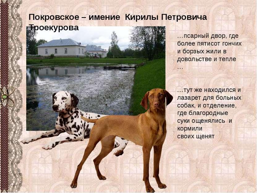 Покровское – имение Кирилы Петровича Троекурова …псарный двор, где более пяти...