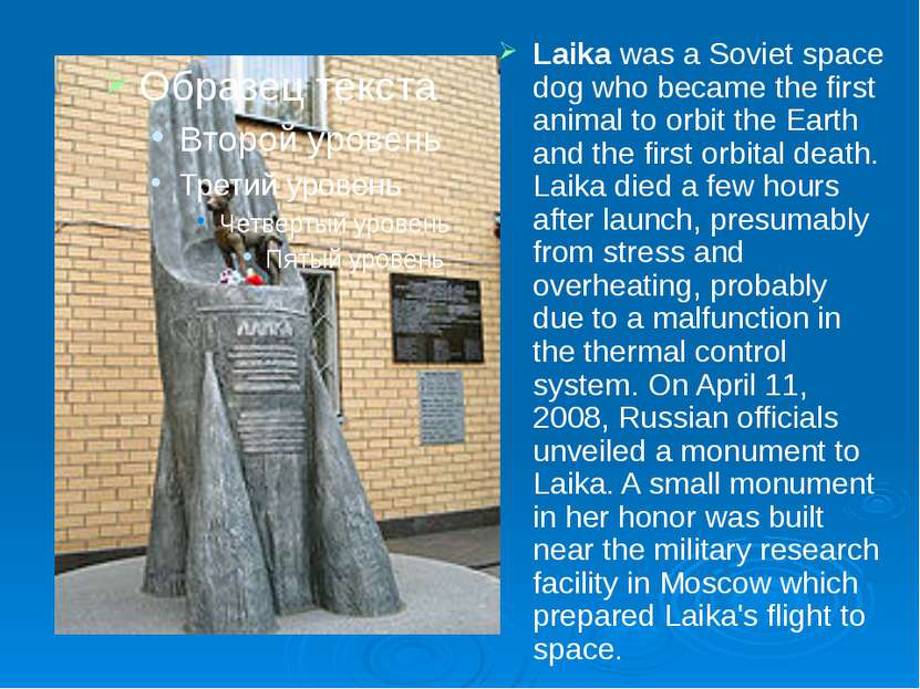 Laika was a Soviet space dog who became the first animal to orbit the Earth a...