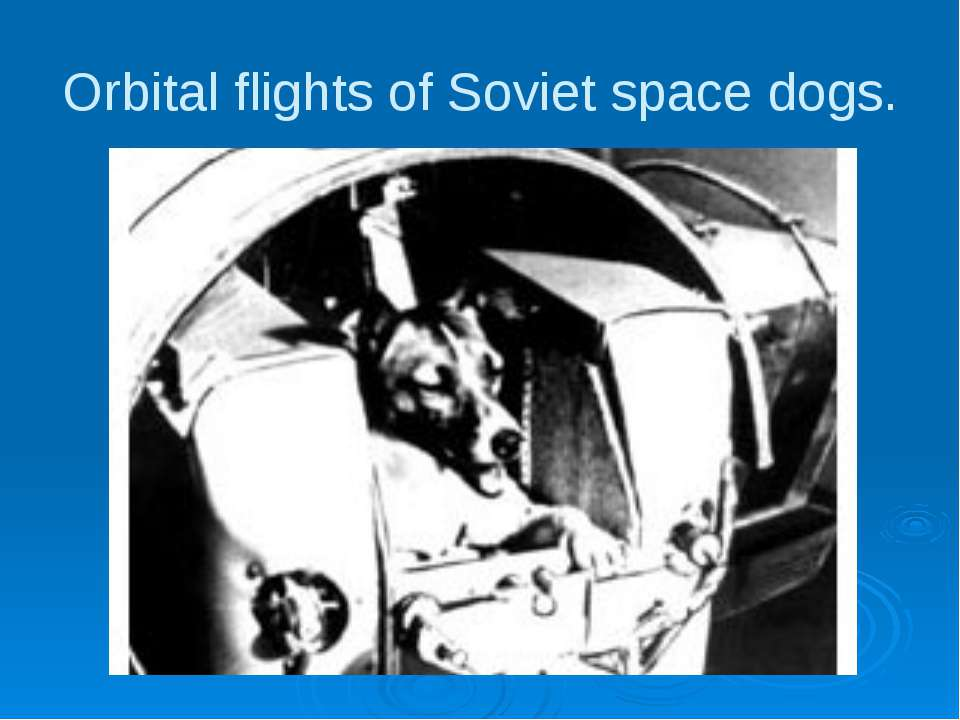 Orbital flights of Soviet space dogs.