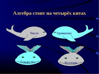 Алгебра стоит на четырёх китах Число Уравнение Тождество Функция