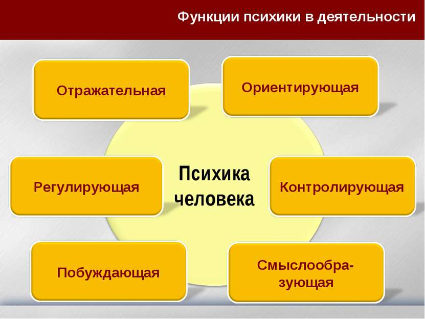 Функции психики в деятельности