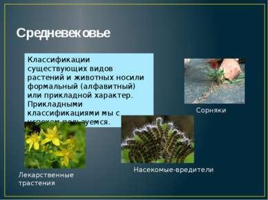 Средневековье Классификации существующих видов растений и животных носили фор...