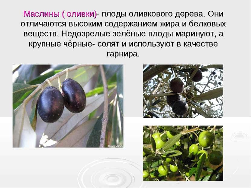 Маслины ( оливки)- плоды оливкового дерева. Они отличаются высоким содержание...
