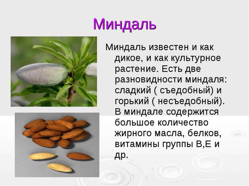 Миндаль Миндаль известен и как дикое, и как культурное растение. Есть две раз...