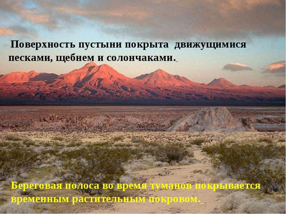 Поверхность пустыни покрыта движущимися песками, щебнем и солончаками. Берег...