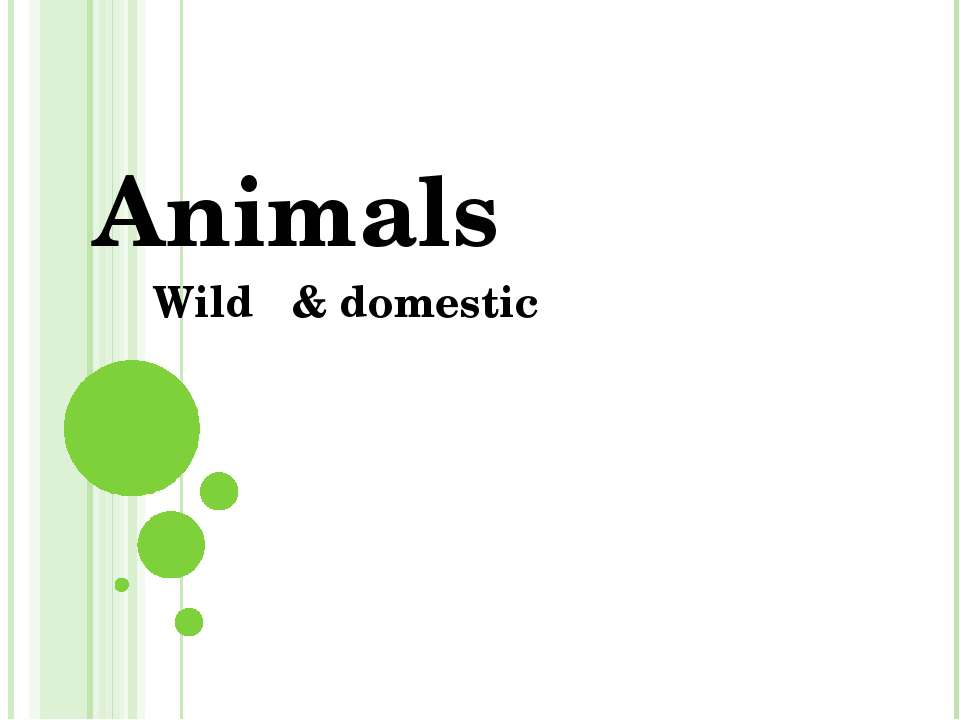 Animals Wild & domestic