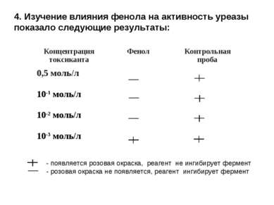 4. Изучение влияния фенола на активность уреазы показало следующие результаты...