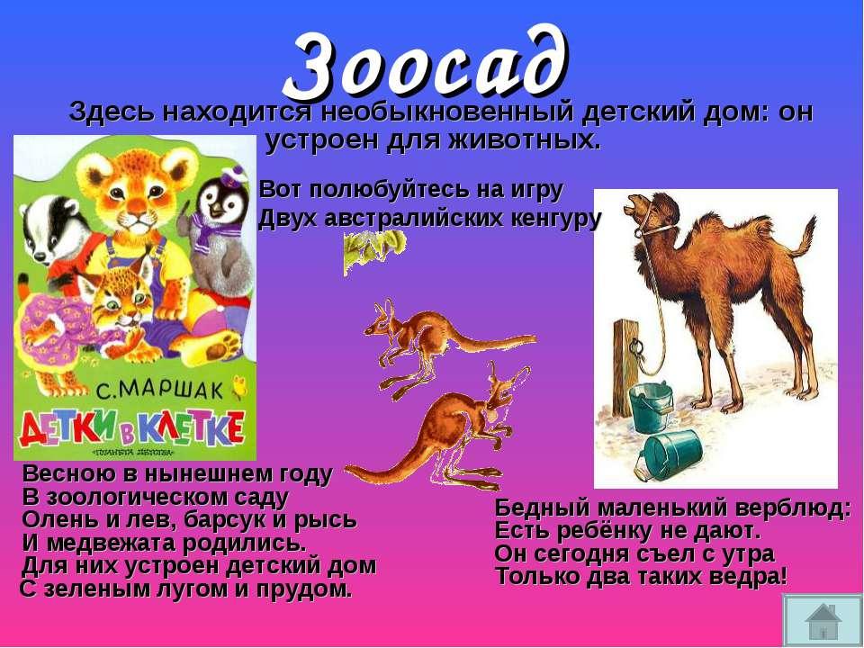 Зоосад Здесь находится необыкновенный детский дом: он устроен для животных. В...