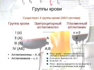 Группы крови Существует 4 группы крови (АВО система) Агглютиногены – А; В Агг...