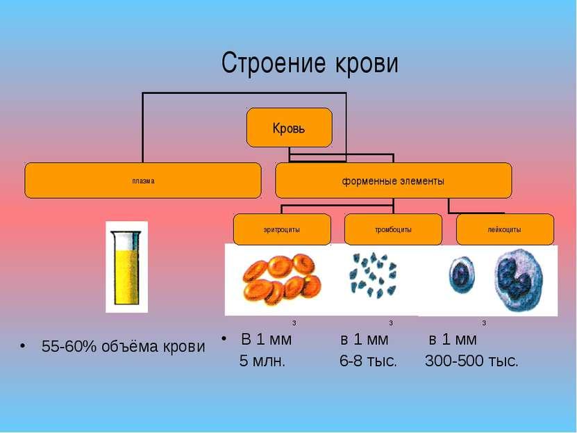 55-60% объёма крови 3 3 3 В 1 мм в 1 мм в 1 мм 5 млн. 6-8 тыс. 300-500 тыс. С...