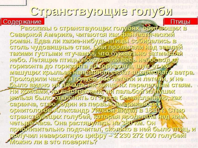 Странствующие голуби Рассказы о странствующих голубях, обитающих в Северной А...
