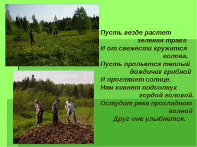 Пусть везде растет зеленая трава И от свежести кружится голова. Пусть прольет...