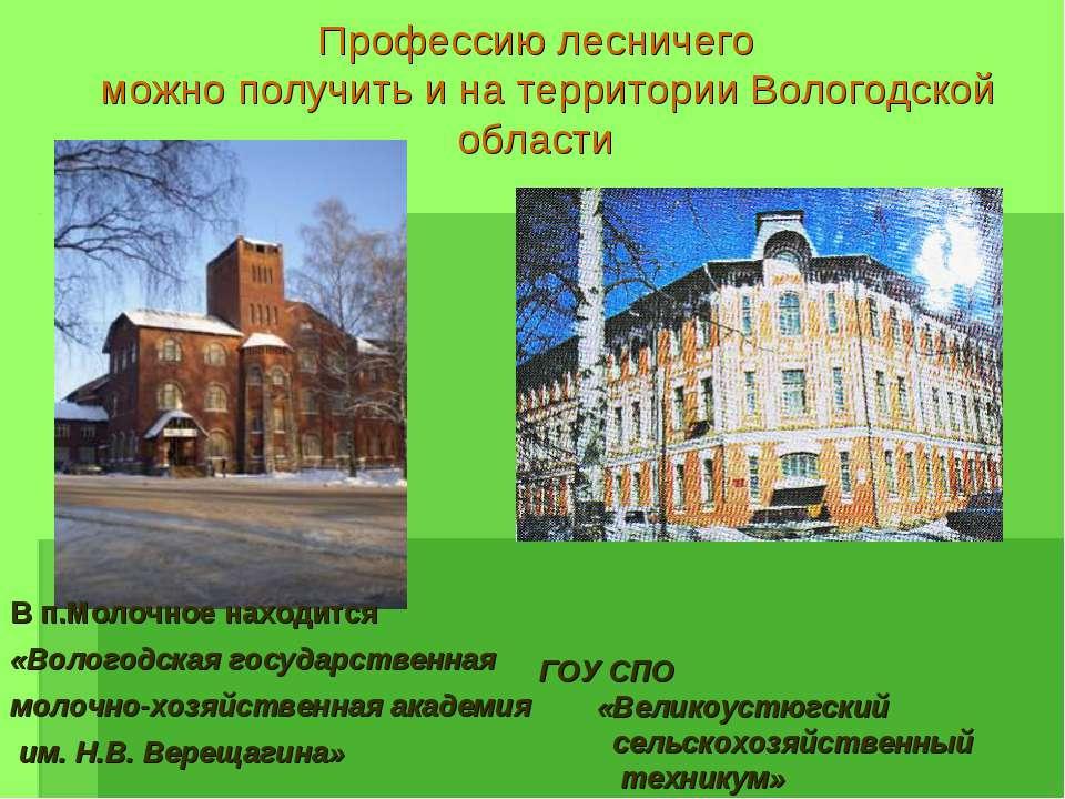 Профессию лесничего можно получить и на территории Вологодской области