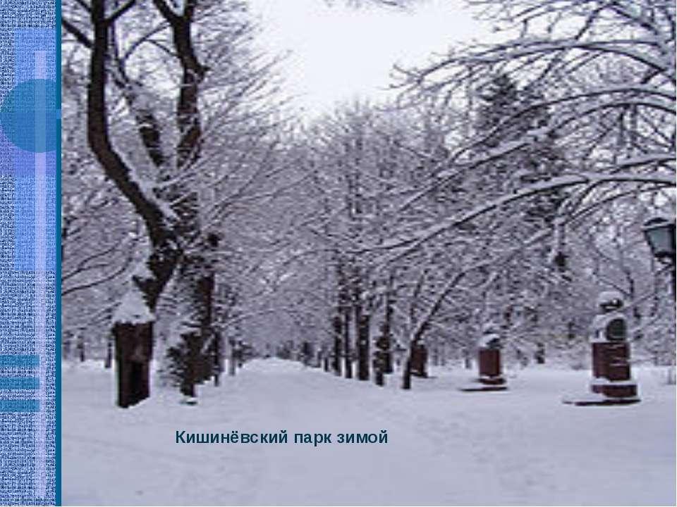 Кишинёвский парк зимой