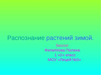 Распознание растений зимой. биолог Филиппова Полина 1 «2» класс МОУ «Лицей №3»