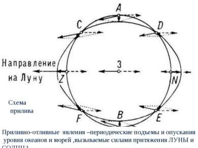 Схема прилива Приливно-отливные явления –периодические подъемы и опускания ур...