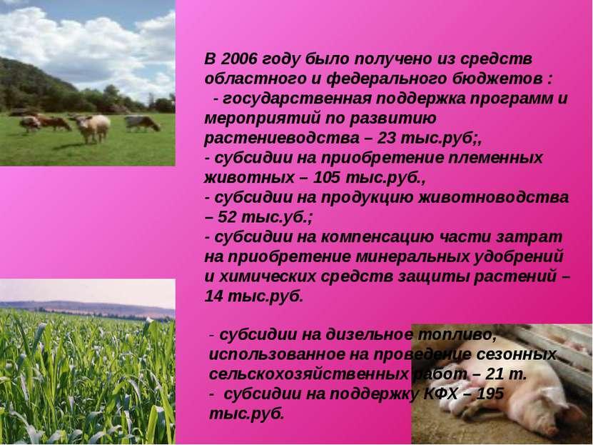 В 2006 году было получено из средств областного и федерального бюджетов : - г...