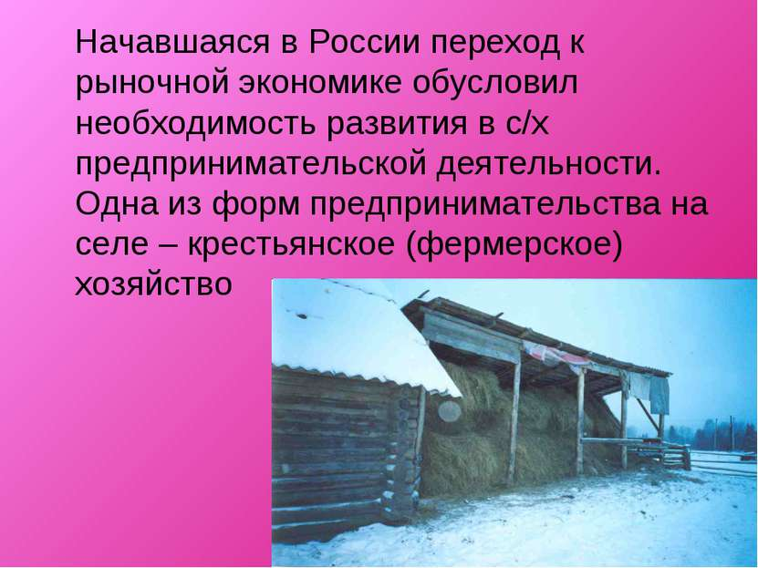 Начавшаяся в России переход к рыночной экономике обусловил необходимость разв...