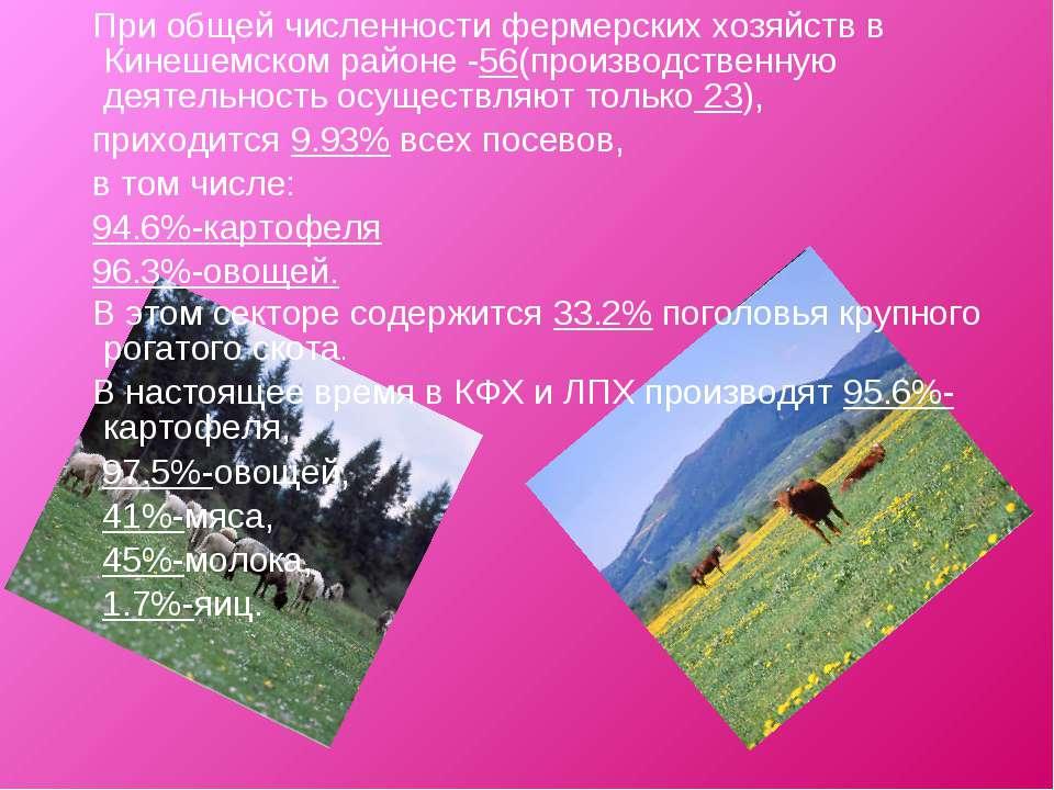 При общей численности фермерских хозяйств в Кинешемском районе -56(производст...